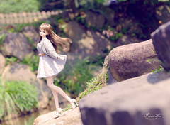 Classical (smart991210) Tags: canon sony volks dd dollfiedream doll 夜々