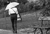 Virtuel. (Canad Adry) Tags: paris konica hexanon ar 135mm f32 parapluie umbrella woman walk street noir et blanc blanck white sony alpha e mount a6000 vintage old lens manual parc walking pluie rain