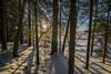 Joensuu - Finland (Sami Niemeläinen (instagram: santtujns)) Tags: joensuu suomi finland luonto nature kuhasalo pyhäselkä järvi lake snow lumi ice jää frozen sunset auringonlasku maisema landscape pohjoiskarjala north carelia