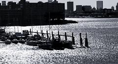 Boatyard--PM Sun (PAJ880) Tags: boatyard east boston skyline pm light urban waterfront winter bw mono