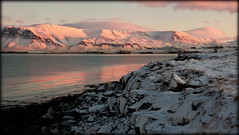 Winter morning (Reykjavik, Iceland) (armxesde) Tags: pentax ricoh k3 iceland island winter snow schnee reykjavik red rot wasser water atlantik atlantic ocean bay bucht faxa himmel sonnenaufgang dämmerung twilight meer reflection spiegelung