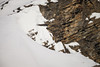 Bearded vulture / Bartgeier (moggl) Tags: beardedvulture bartgeier schweiz alpen swiss alps wildelife