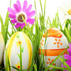 Happy Easter Hidden Numbers (knfgame2015) Tags: free knfgame newescapegame game knf games escapegame newgames androidgames mobilegames roomescape escapegames puzzlegames puzzle escapegameandroid hiddenescapegames