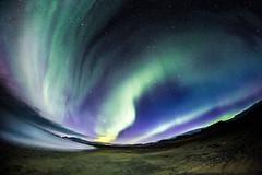Aurora borealis, Iceland (Zeeyolq Photography) Tags: night iceland sky landscape northernlight auroraborealis islande nature