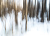 Ghosts (Bente Nordhagen) Tags: vinter winter trees ghosts shadows forest abstract blured blur
