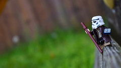 Ventures into the Unknown (RagingPhotography) Tags: lego star wars explorer explore stormtrooper storm trooper imperial galactic empire troop outside outdoors outdoor nature walking walk ragingphotography