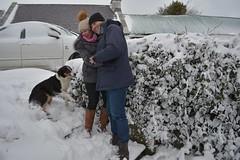 DSC_8021 (seustace2003) Tags: baile átha cliath ireland irlanda ierland irlande dublino dublin éire glencullen gleann cuilinn st patricks day zima winter sneachta sneg snijeg neve neige inverno hiver geimhreadh
