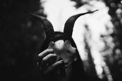 I met death (Fabrizio Ara) Tags: samyang24mmt15asifumc samyang 24mm f14 1424 fahc manualfocus sony a7 ilce7 manualfocuslens vintagelens samyang24mm14 mono black white bianco nero bw blackwhite blackandwhite blancoynegro monochrome bn dark monochromatic death creepy grime shadow disturbia postapocalyptic eerie weird damned cvlt culto hell satanic skull bones disturbed surrealism gothic mystery occult occultism paganism disturbing evil devil esoteric lucifer hermetism mysticism blackness alchemic esoterismo