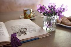 Still life (Jolivillage) Tags: jolivillage stilllife fleurs flowers fiori livre libro book fabuleuse