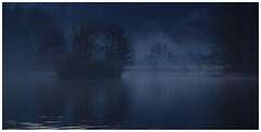 Winter Silence (Max Angelsburger) Tags: deutschland germany badenwürttemberg badenwuerttemberg naturereserve naturpark stromberg heuchelberg natur light fantastic bluehour exposure lake isle heron greyheron bird view dark dusk landscape landschaft march 2018 silence beautiful weather blue rich reflections morning mood atmosphere feelgood feeling relax valley pond see fischreiher graureiher soft meditation absoluteequilibrium mirror fog mist tree glas pretty walk countryside harmony