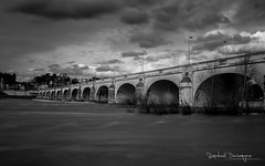 Pont Wilson (Raph/D) Tags: lee big stopper long esposure pose longue eau water flow pont wilson tours france bridge architecture day jour canon eos 7d mark ii l series canoneos7dmarkii series2470mmef 2470mm f28l usm black white bw city ville town urban nd filter filtre loire