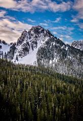 Enjoyed the spring like conditions in Mount Rainier National Park over the weekend (plottsdaniel) Tags: dslr landscapephotography america northamerica unitedstates washington mountrainiernationalpark seattle pacificnorthwest pnw mountains mountain landscape nikkor nikon
