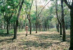TreerF 7 (Wood Oliver) Tags: photoshop green nude film 135 olympus mjuii 35mm28 fujicolor asa100