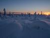 Winter sunset (Fjällkantsbon) Tags: lappland sverige träd brännåker evamårtensson gitsfjälletsnaturreservat västerbottenslän se lapland sunset winterlight winter