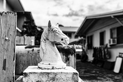 Gatepost in faded glory (Guy: Jussum Guy) Tags: gatepost statuary horse head sculpture house driveway mailbox rust plank rotted monochrome blackandwhite pentax k3 honolulu oahu hawaii