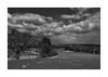 """im Frühjahr - Sigma DC 18-50mm 2.8-4.5 HSM (alex """"heimatland"""") Tags: sigma dc 1850mm 2845 hsm sd15 foveon oberlausitz sorben wenden gröditz gefilde endmoräne mistel"""