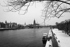 A walk by the Meno river (Sam García GA.) Tags: frankfurt germany europe meno river sachsenhausen snowway snow snowwalk