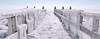 Extreme weather creates special images at Afsluitdijk (B℮n) Tags: vlietermonument afsluitdijk breezanddijk winter ijs ice frozen sea ijsselmeer waddenzee aanmeerplaats beijsd bevroren brugdijk hekhekwerk kou koud koude loopvlonder meer meerpaal meerpalen monument ochtend ochtendkou paal palen stilvlonder vriest vriezen zonsopgang cold morning holland netherlands pier noord layer icing icicles 2march2018 2maart2018 100faves topf100 artic 200faves topf200 300faves topf300