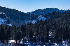 Custer Park 20180223-0012 (Photos By Bob Van) Tags: blackhills horsethieflake landscape snow southdakota winter keystone unitedstates us
