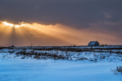 New Day In Progress (Clint Everett) Tags: new day iceland winter sunrise sun rays sky country farm rural construction landscape workinprogress morning house tractor