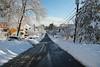 SDQ_0603, Downhill (rbrazile) Tags: arlington massachusetts winterstorm snow