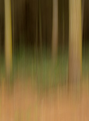 20180315_5167_7D2-37 Blurred Trees #2 (johnstewartnz) Tags: icm tree trees blur blurred intentionalcameramovement canon canonapsc apsc eos 7d2 7dmarkii 7d canon7dmarkii canoneos7dmkii canoneos7dmarkii 2470 2470mm ef2470mmf4l bottlelakeforest
