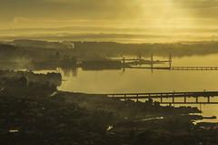 Ría de Ferrol (Alphonso Mancuso) Tags: ferrol ferrolterra ria golden light dorada puente pías