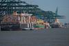 MPET Terminal_DVL8071 (larry_antwerp) Tags: antwerp antwerpen 安特卫普 安特衞普 アントウェルペン אנטוורפן 안트베르펜 أنتويرب port 港口 海港 פארט 港湾 항구 بندر ميناء belgium belgië 比利时 比利時 бельгия ベルギー בלגיה बेल्जियम 벨기에 بلژیک بلجيكا schip ship vessel 船 船舶 אונייה जलयान 선박 کشتی سفينة schelde 斯海尔德河 スヘルデ川 스헬더 강 رود شلده سخيلده mpet container gantry crane mscvega 9465265 msceyra 8201648 capemanila 9571313 mscmelissa 9226918