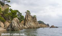 el golfet (_perSona_) Tags: costa brava catalonia catalunya cataluña girona gerona mediterranean mediterrani mediterraneo mar sea cove cala rock roca pine pi pino