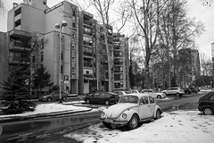 Beetle in the snow (D.K. Baric) Tags: bw blackandwhite zagreb croatia winter snow vw beetle oldtimer car classic city retro