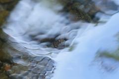 Gales Creek (Tony Pulokas) Tags: galescreek oregon blur bokeh creek stream reflection forest rock