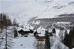 Mascognaz - Ayas Val d'Aosta (Photo by Lele) Tags: mascognaz ayas aosta italia montagna maini daniele trekking racchette inverno