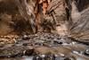 Kanarra Creek, Utah (mnryno) Tags: water rocks stream kanarracreek slotcanyon utah