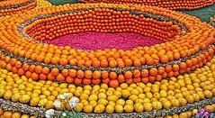 Corsos des fruits d'or (laurent KB) Tags: menton provencealpescôtedazur orange fêteducitron citron corso