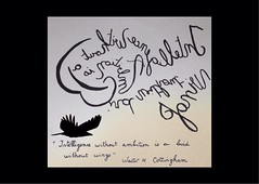 « Intelligence without ambition is a bird without wings » Walter H Cottingham. (Calligraphy typography écriture speculaire) Tags: artwriting handwriting oiseau bird writing painting artwork art typographie typography calligrafia calligraphie calligraphy handwrinting proverbe citation quotes quote quotation quotations