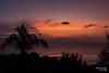 Coucher de soleil Thailand (Chris_photo06) Tags: canon thailande coucherdesoleil beautiful nice 700d mer sun palmier orange groupenuagesetciel
