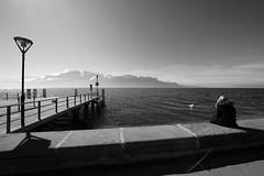 "By the Lake (Svend RS) Tags: sonyilce7m3 sonya7 alpha a7m3 1224mm40 fe1224mmf4g sel1224g zoom wideangle ultrawideangle blackandwhite monochrome noiretblanc ""artinbw"" biancoenero blancoynegro"