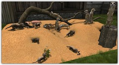 TLC Meerkats (Abi Latzo) Tags: |t|l|c| meerkats animal gacha ultraevent secondlife sl shopping decor homeandgarden home garden