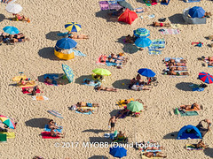 Portugal 2017-9021081-2 (myobb (David Lopes)) Tags: 2017 adobestock allrightsreserved atlanticocean europe nazare portugal aerialview beach beachumbrella copyrighted day daylight enjoyment highangleview leisureactivity outdoors sand sunbathing tourism touristattraction traveldestination umbrella vacation ©2017davidlopes