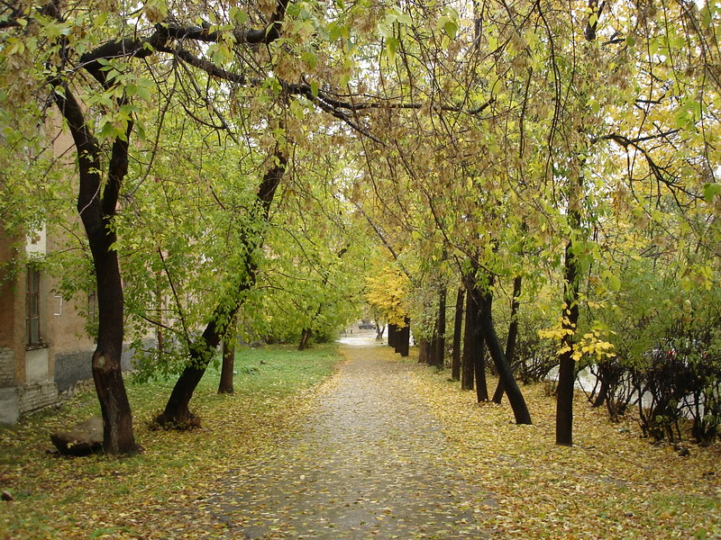 фото: Осень 2006