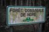 Vers le Pic de Nore (Jamiecat *) Tags: pic de nore cabardès montagne noire aude tarn forêt domaniale onf office national des col cyclisme