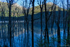 Lake through the drowned trees (NettyA) Tags: 2018 dartriver day6 mtaspiringnationalpark nz newzealand reesdartcircuit southisland tramp tramping dredgeflat lake trees deadtrees reflection