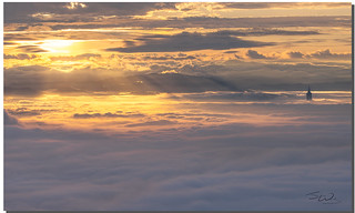 Morning Miracle, Taipei 101, Taiwan