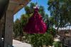 Fashion week? Irak 2017 (rvjak) Tags: irak iraq middleeast moyenorient d750 nikon dress robe pendu tree