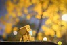 (janetcmt's pictures) Tags: penflens 40mmf14 bokeh danboard danbo