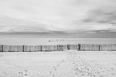 Les Optimistes sont de sortie (Fabrice Denis Photography) Tags: seascapephotography noiretblanc bwphotography bateaux coastalphotography boats voiliers sea blackandwhitephotos seascapes beachphotography beach ocean monochrome monochromephotography blackandwhitephotographer coastal oceanphotography blackandwhite plage seascapephotographer blackandwhitephotography seascapephotos girondine châtelaillonplage nouvelleaquitaine france fr