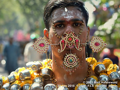 2009-02a Thaipusam Penang 2018 (81) (Matt Hahnewald) Tags: matthahnewaldphotography facingtheworld skewer pin needle hook piercing tongue faith kavadiattam pain pierced impact live robust real diversity inclusiveness character head face colorful eyes consent emotion travel culture tradition custom religion penance repentance spiritual hindu hinduism thaipusam festival celebration devotee georgetown penang malaysia asian malaysianindian tamil oneperson male adult young man image photo faceperception physiognomy nikond3100 primelens 50mm 4x3 horizontal street portrait closeup outdoor color posing authentic suffering mankind nikkorafs50mmf18g fullfaceview expression headshot lookingatcamera