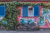 Blue Shutters (suzanne~) Tags: bicycle bike graffiti haidhausen lonebicycle lonebike munich window germany
