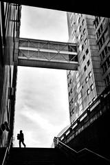 Delivery (Per Österlund) Tags: bw bnw globen baw street streetphotography silhouette stairs 2017 streetshot strasenfotografie gatufoto man blackandwhite mo mono fotografiadistrada fotografíadecalle architecture huawei