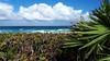 20180219_13 Juno Beach Florida USA (FRABJOUS DAZE - PHOTO BLOG) Tags: junobeach palmbeachcounty pbc fl fla florida sunshinestate usa unitedstates america amerikka yhdysvallat ranta beach